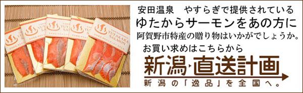 【新潟直送計画】安田温泉ゆたからサーモン